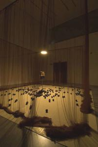 Cildo Meireles, Eureka / Blindhotland, 1970-5, Tate, Copyright the artist