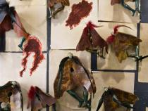 Wangechi Mutu, Moth Collection, 2010. Sender Collection, New York. Image courtesy and © the artist and Gladstone Gallery, New York and Brussels