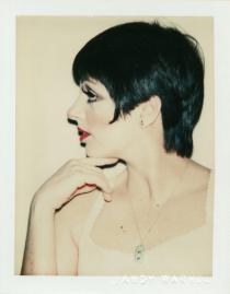 Andy Warhol, Liza Minnelli, 1977, The Andy Warhol Museum, Pittsburgh; Foundling Collection © 2008 The Andy Warhol Foundation for the Visual Arts, Inc. All rights reserved