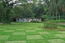 Roberto Burle Marx, Gardens of the former Francisco Pignatari residence, now Parque Burle Marx, São Paulo, 1956	